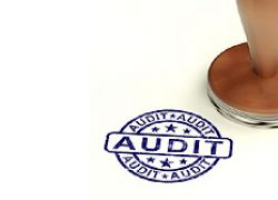 Audits, analyses, due diligence and controlling